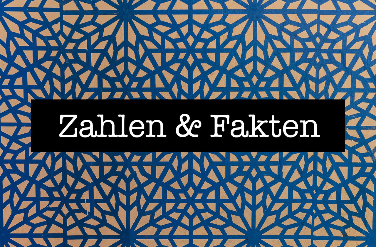 ZahlenFakten_Designed-by-topntp26_Freepik.jpg